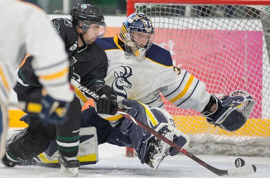 Hockey Huskies rout Pronghorns for weekend sweep