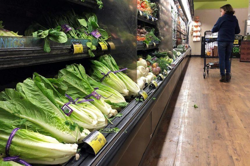 Canada's E. coli outbreak steps lag U.S. because of caseloads experts