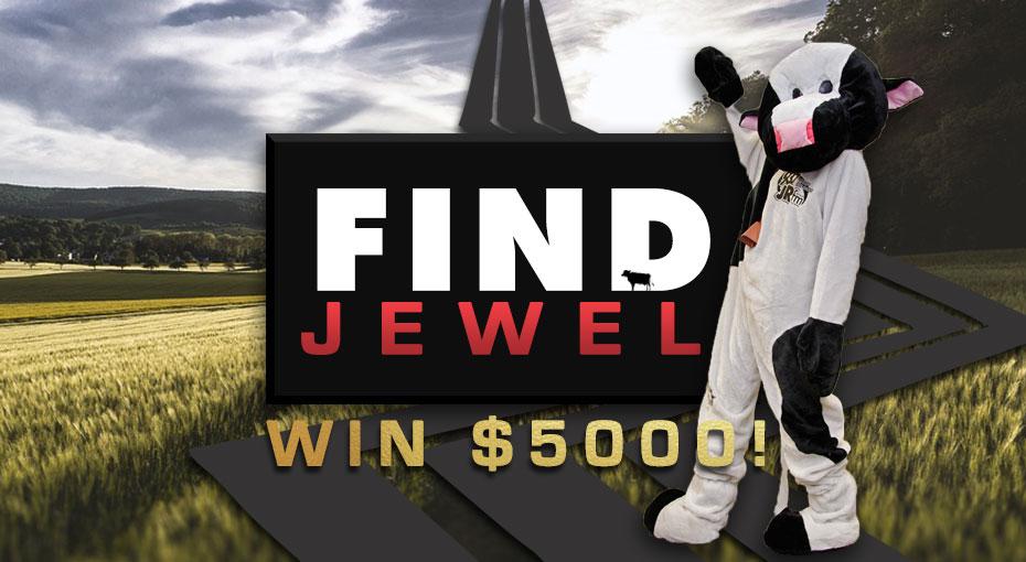 Find Jewel The JRfm Cash Cow