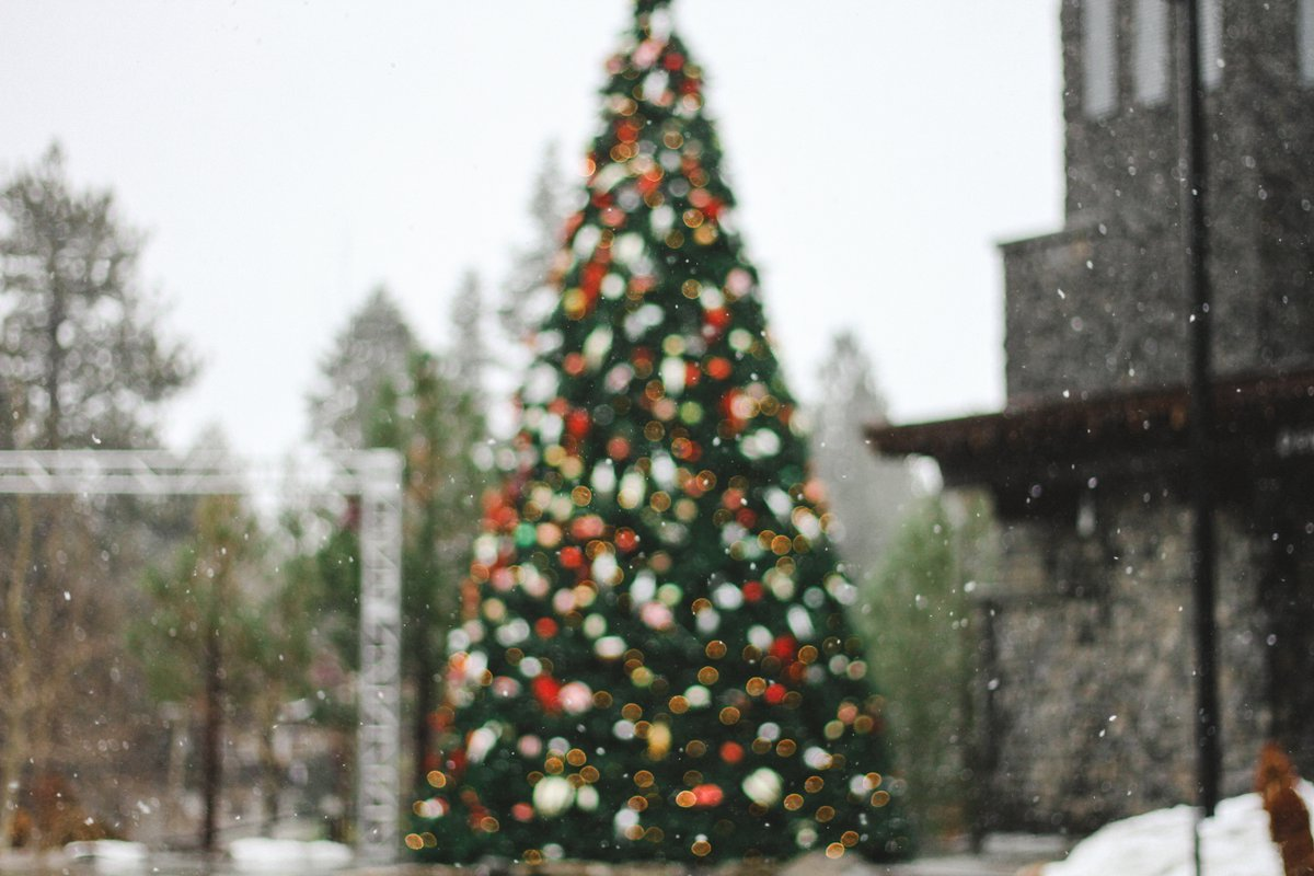 WIN TICKETS to the Top 5 Winter Light Displays + Activities *** CONTEST POST ***