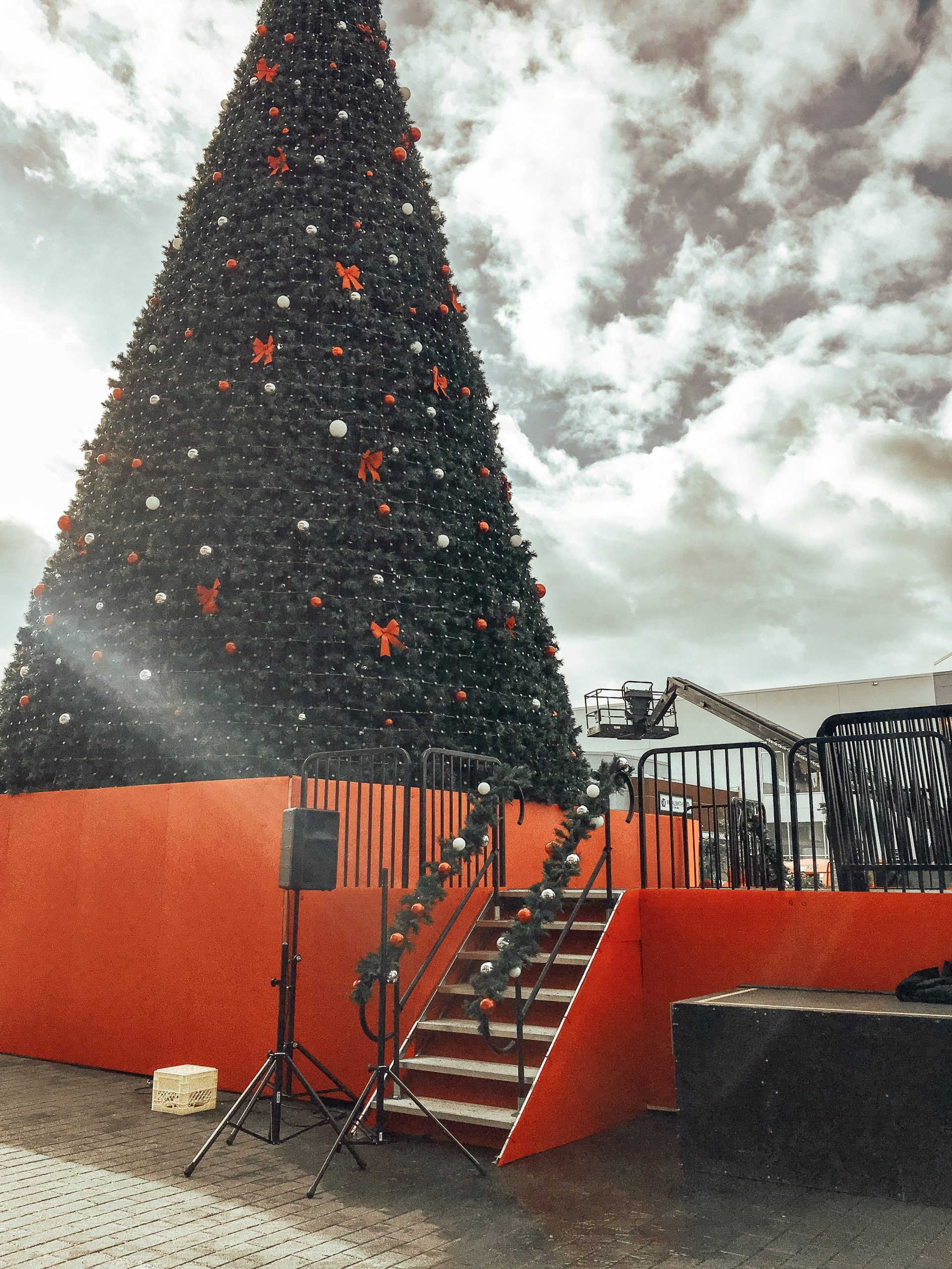 One of Canada's tallest Christmas trees is in Abbotsford!