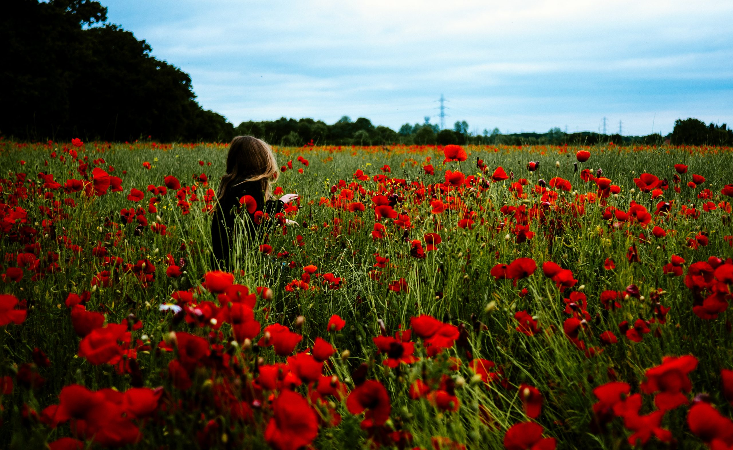 Ways To Help Young Kids Learn About Remembrance Day