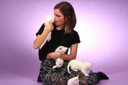 Emma Watson and KITTENS!!!