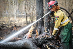 Lumby Hopes to Expand Fire Protection Plan