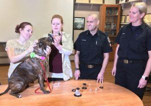Life Saving Equipment For Pets