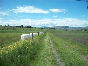 Debate Over Use Of Ranch Land