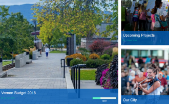 New Website For City Input