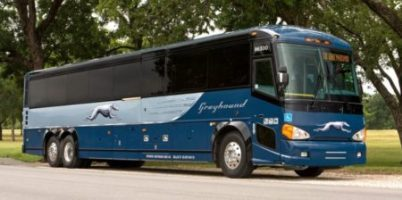 Greyhound to Cut Routes, Local Reaction