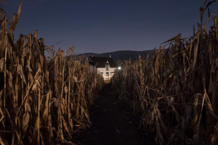 Field of Screams Scares Up Big Total For Ranch