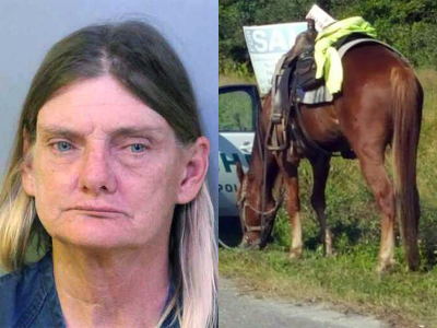 Woman Charged With DUI...Riding a Horse.
