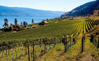 BC To Ramp Up Wine Promotions