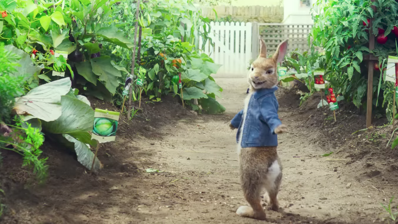 Why are some parents boycotting 'Peter Rabbit'?