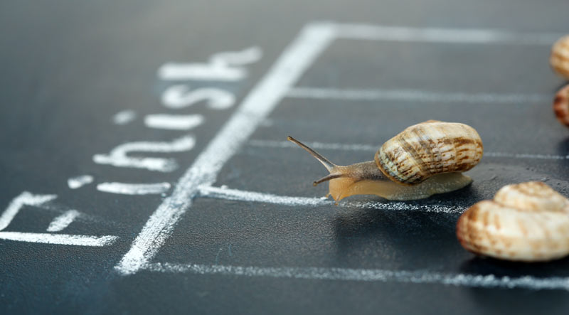 Think YOU'RE bummed about winter?  In England, the snails can't race.