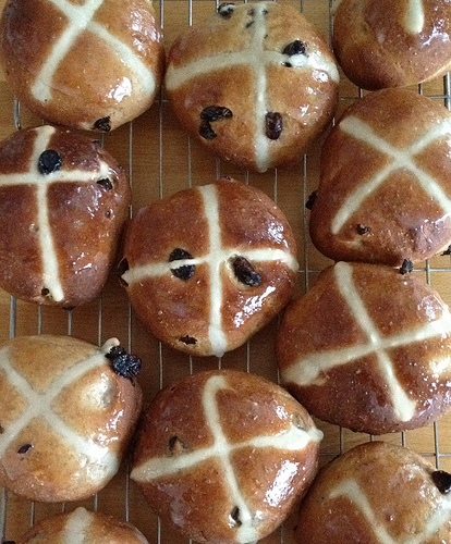 Hot Cross Buns? Not for Dogs