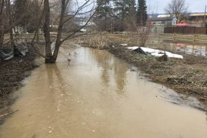 Critical Stage For Armstrong Flood Threat