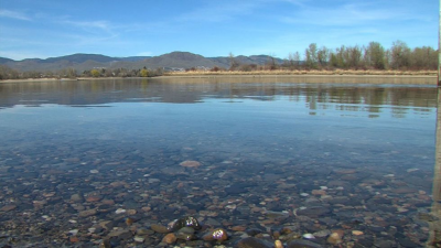 Body Spotted Floating in Thompson River