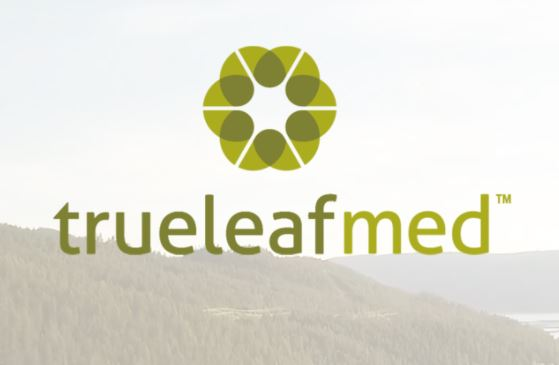 True Leaf Pitches In New York
