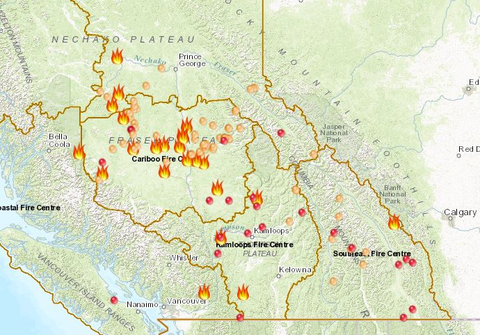 Forest Enhancement Funding To Wildfire Scarred Regions