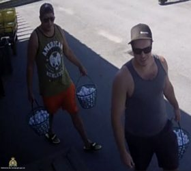 'Fore'ward Thieves Take Golf Balls