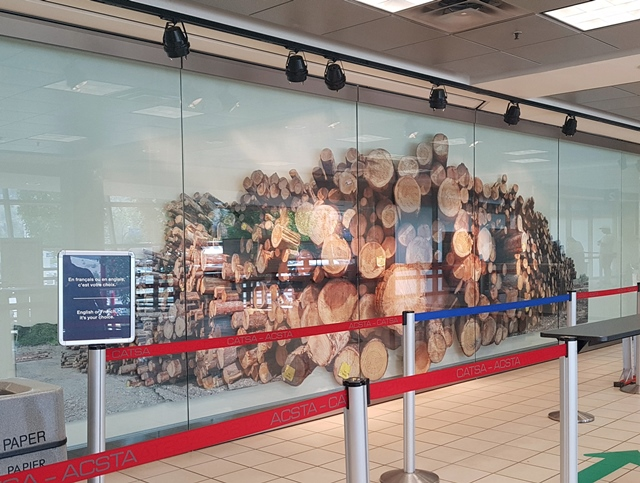 Log Pile Up At Airport