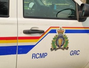 Wanted Man Nabbed After Fleeing Cops