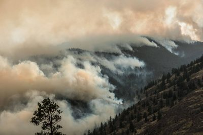 Weather Helps Crews Keep Snowy Mt. Fire Away From Homes: Latest