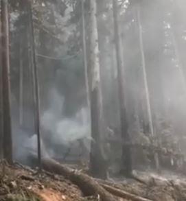 Fire Danger Rating Drop in Kamloops Fire Centre