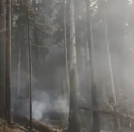 New Tactic Considered For Local Wildfires