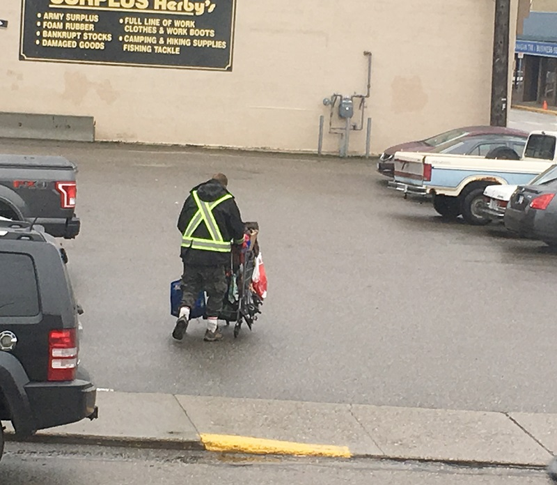 Update: Council Quashes Shopping Cart Bylaw