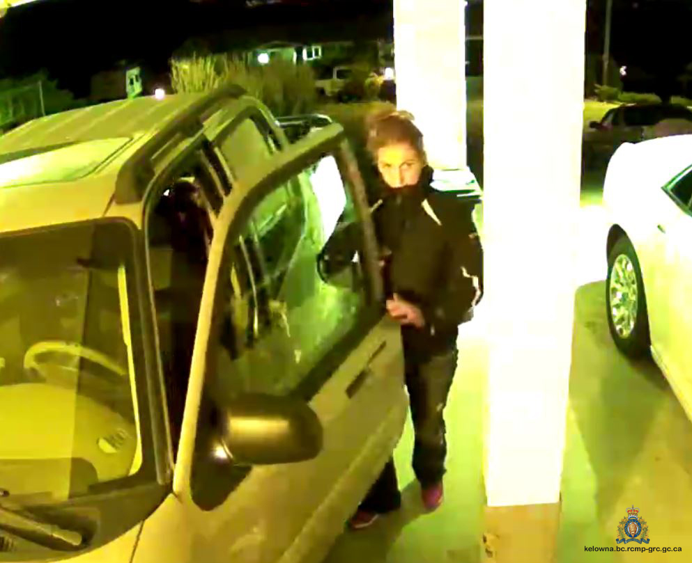 Alleged Thief On Toovey Road