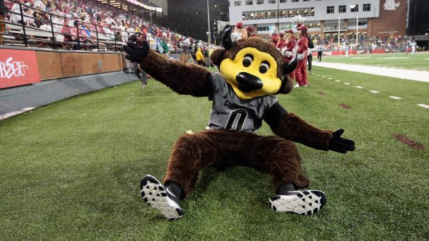 Ouch!  College Football mascot shoots self in groin with T-shirt cannon