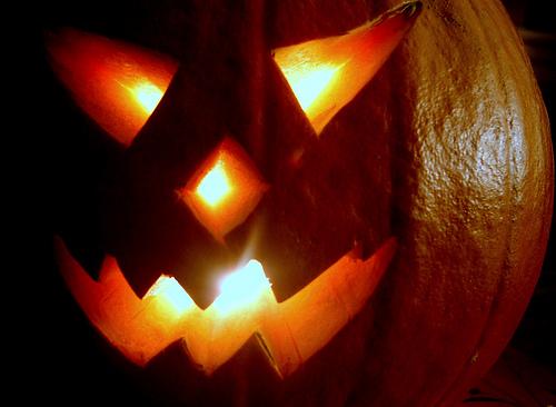 Here's to Pumpkin Longevity