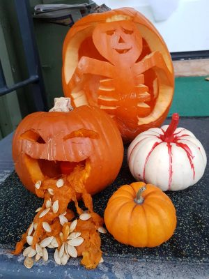 What Do You Do With Pumpkin?