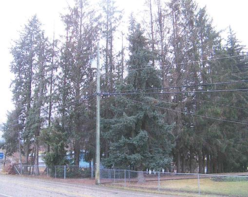 Single Family Lots Approved For Coldstream