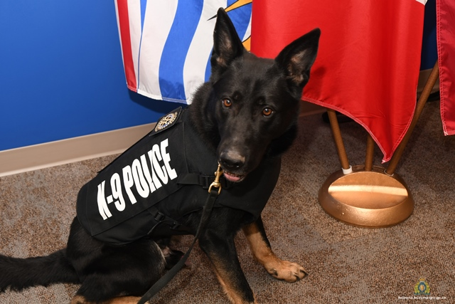 Police Dogs Get Extra Protection