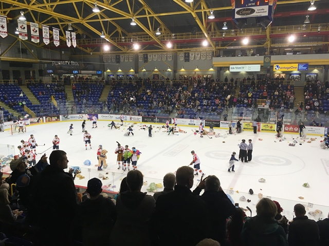 Vipers Edged by Wenatchee on Teddy Bear Toss Night