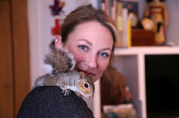 Rescued squirrel now lives with woman, stores nuts in her hair