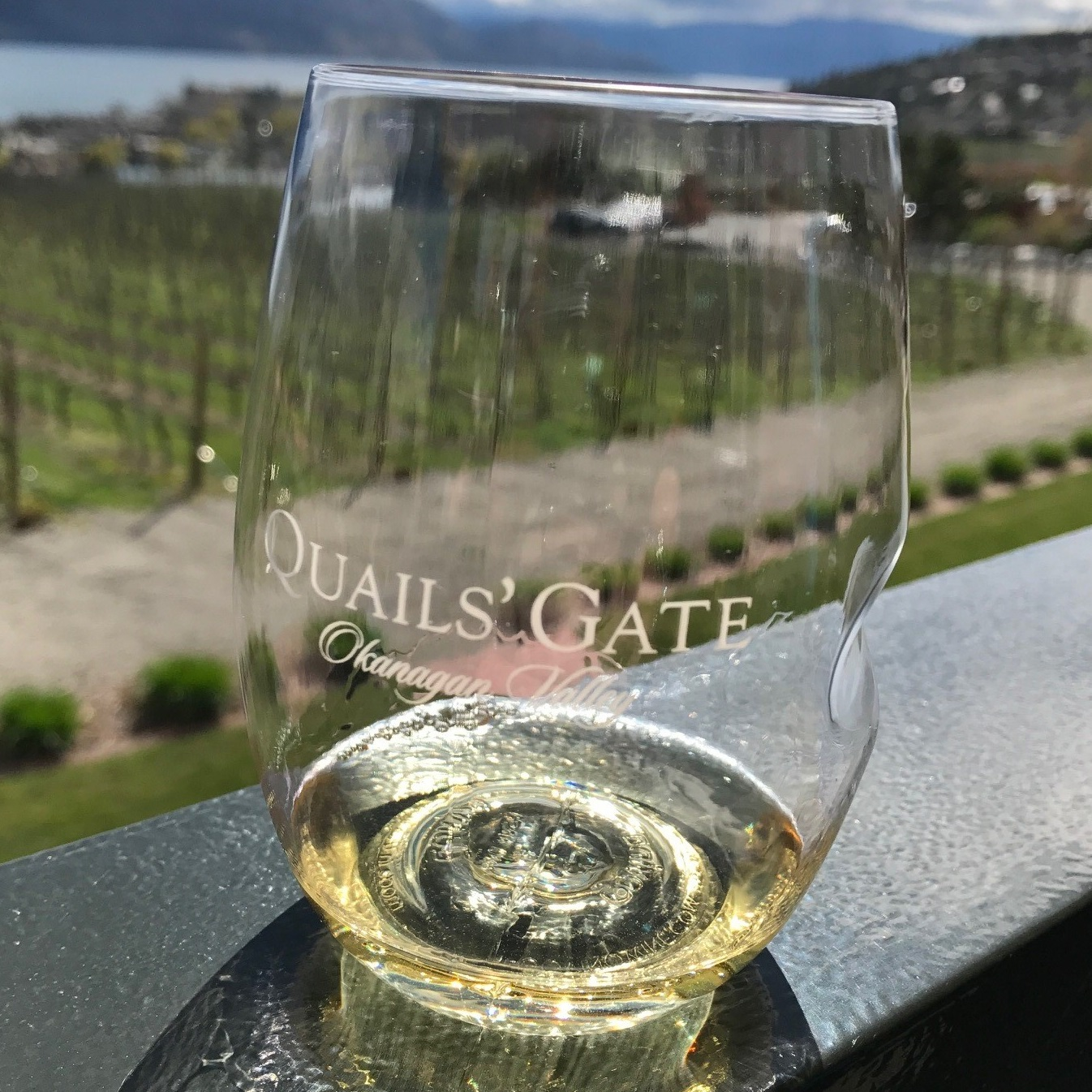We have some amazing treasures in our valley...like Quail's Gate Winery