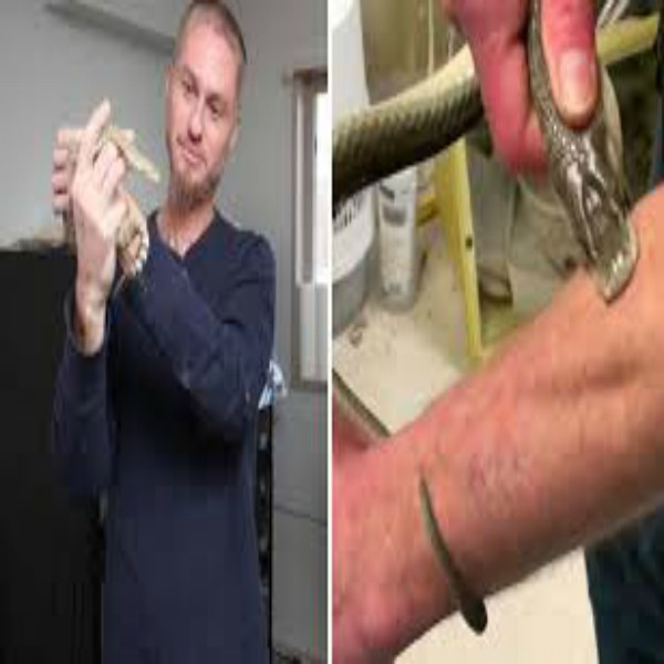 'Venom Man' Lets Deadliest Snakes Bite Him