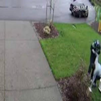 Woman Breaks Leg Stealing Package !!