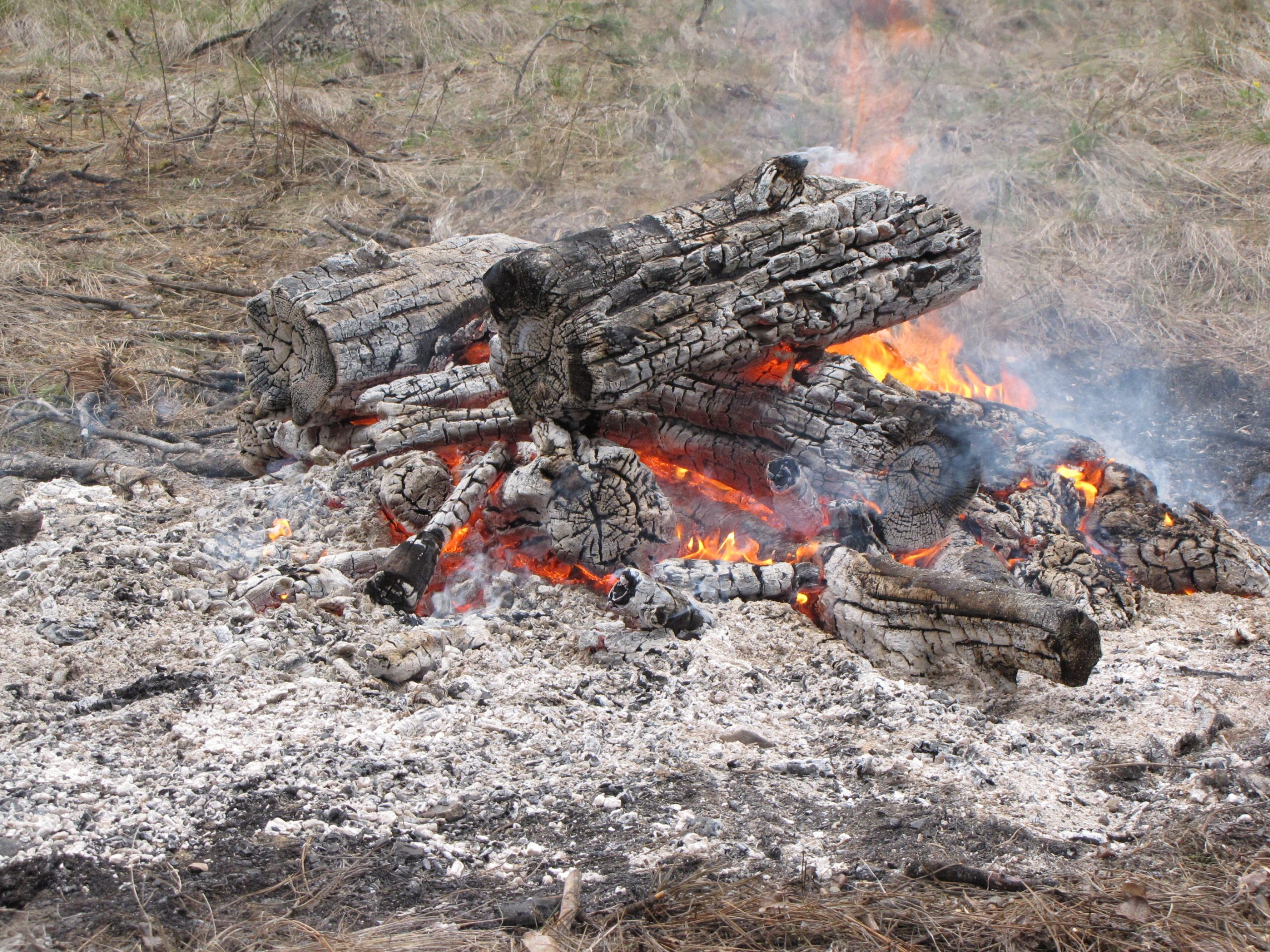 Campfire Ban Starts Tomorrow