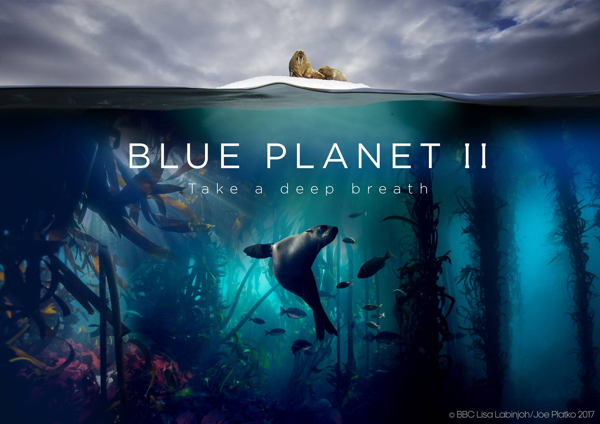 BBC Earth: Blue Planet 2 Is Coming!