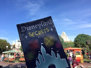DisneyLand Tips And Tricks Learned After 2,000 Trips