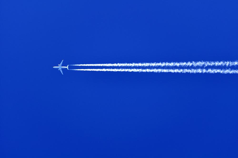 It's a bird, it's a plane...wait...it kinda is!