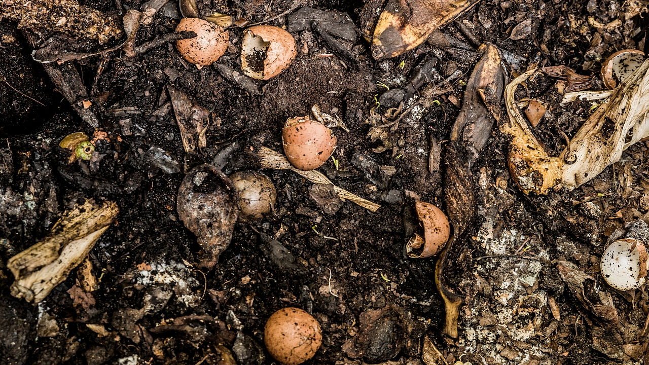 RDEK scraps long-pondered compost facility east of Cranbrook