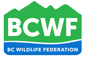Future of fish and wildlife meeting in Invermere Friday