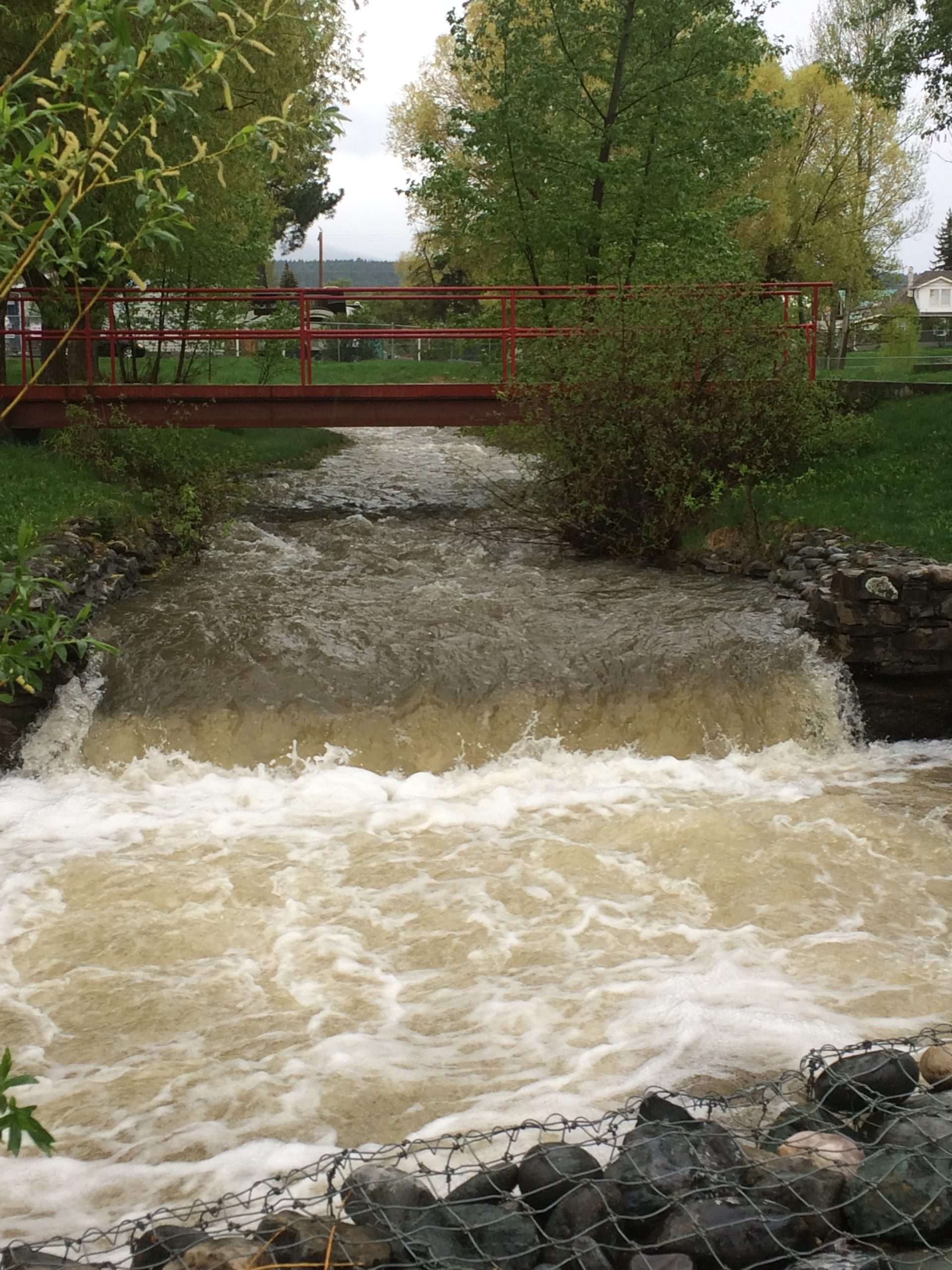 East Kootenay could be under flood watch by weekend