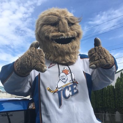Kootenay ICE wants community input on mascot makeover