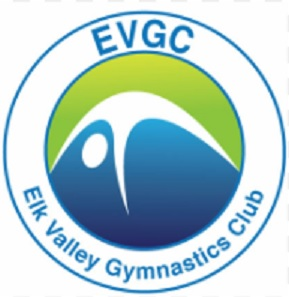 Elk Valley Gymnastics wants to grow interest with new location