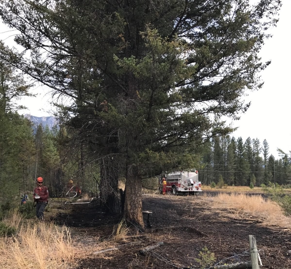Columbia Valley Fire Chief believes grassfire near Windermere human caused